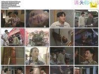 [大闹广昌隆][1997年][国语][繁字][全20集][DVD][周海媚,林家栋,郭少芸,陈启泰]